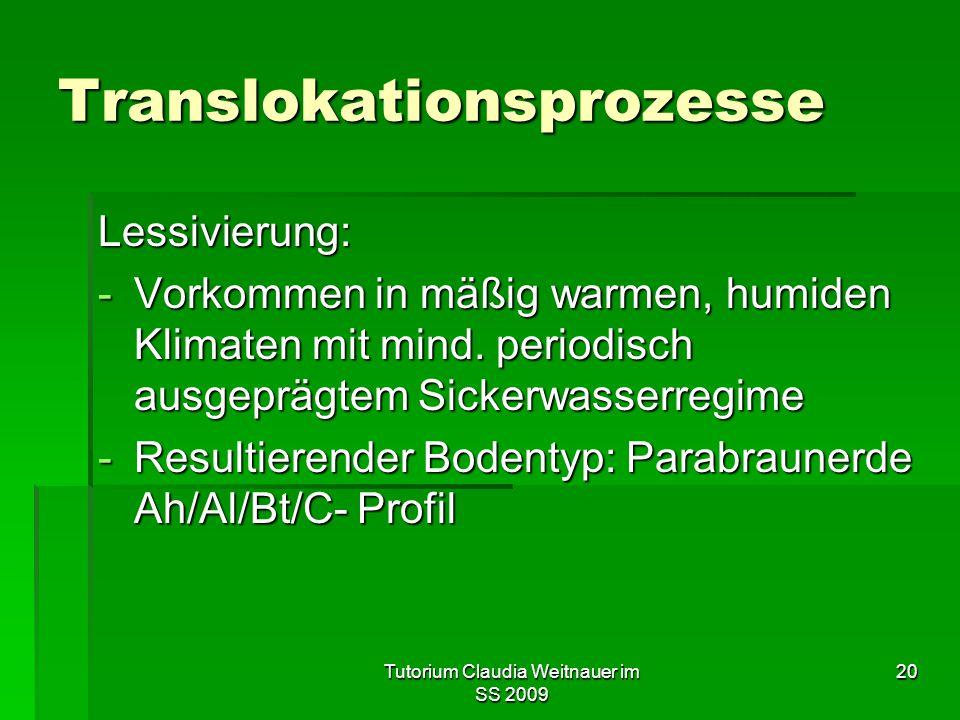 Tutorium Claudia Weitnauer im SS 2009 20 Translokationsprozesse Lessivierung: -Vorkommen in mäßig warmen, humiden Klimaten mit mind. periodisch ausgep