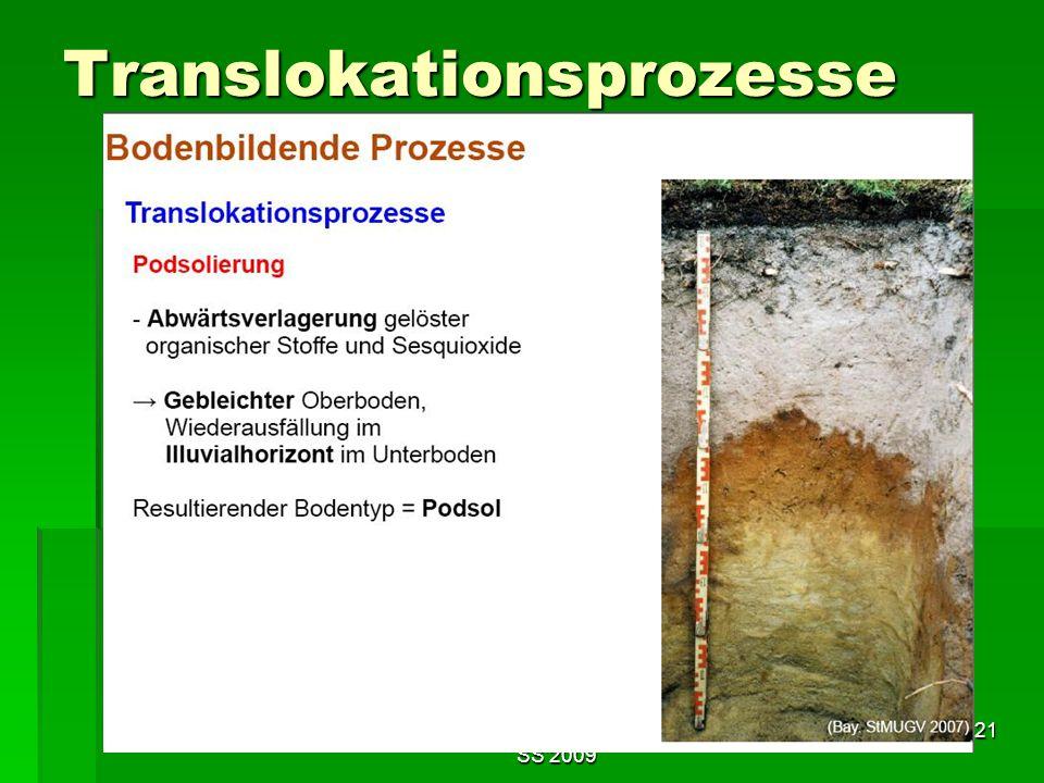 Tutorium Claudia Weitnauer im SS 2009 21 Translokationsprozesse