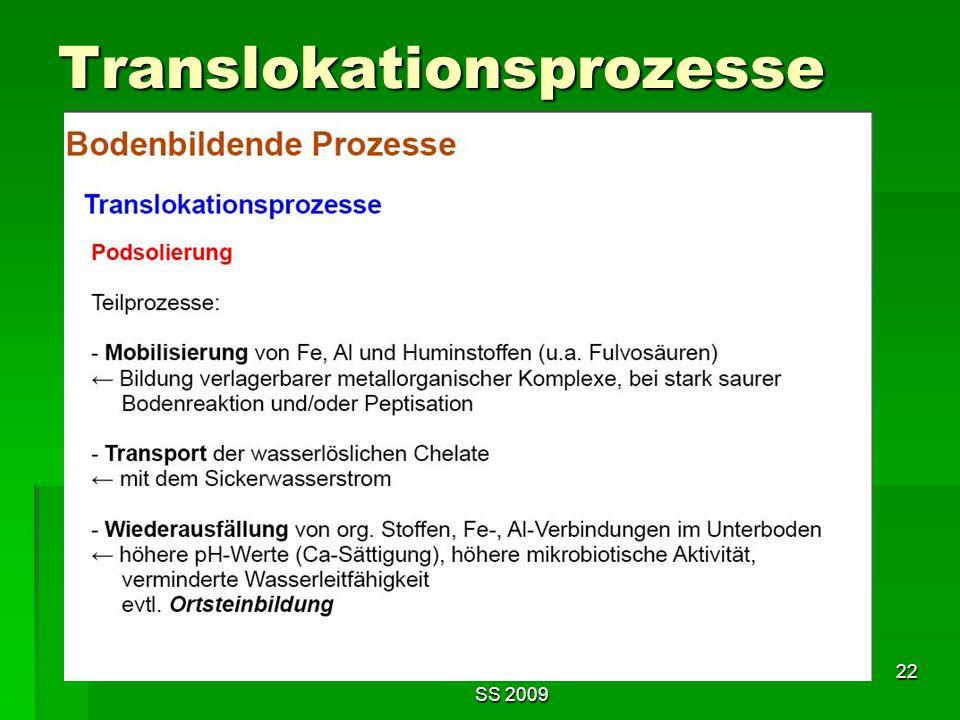 Tutorium Claudia Weitnauer im SS 2009 22 Translokationsprozesse