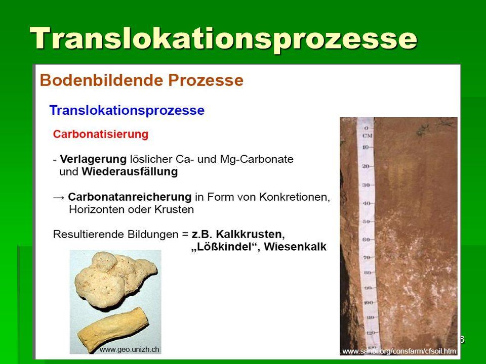 Tutorium Claudia Weitnauer im SS 2009 26 Translokationsprozesse