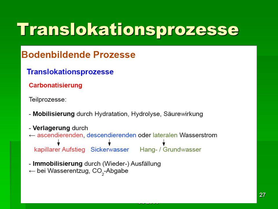 Tutorium Claudia Weitnauer im SS 2009 27 Translokationsprozesse