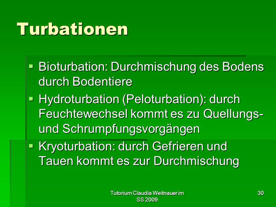 Tutorium Claudia Weitnauer im SS 2009 30 Turbationen  Bioturbation: Durchmischung des Bodens durch Bodentiere  Hydroturbation (Peloturbation): durch