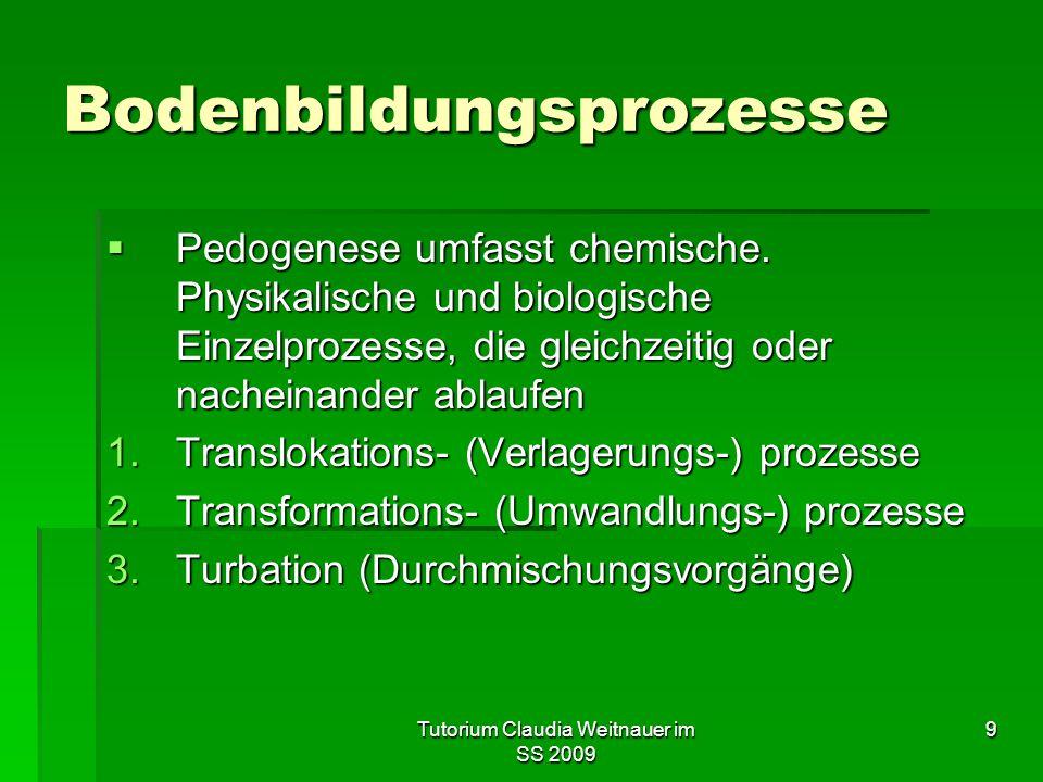 9 Bodenbildungsprozesse  Pedogenese umfasst chemische. Physikalische und biologische Einzelprozesse, die gleichzeitig oder nacheinander ablaufen 1.Tr