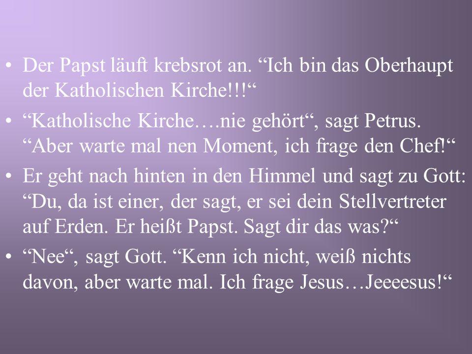 Der Papst stirbt und kommt an die Himmelstür.Petrus begrüßt ihn und fragt nach seinem Namen.