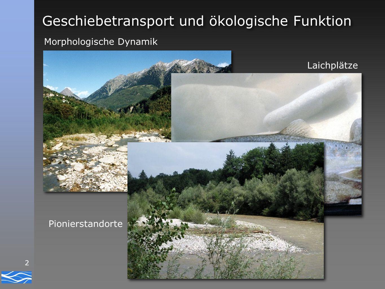 3 Geschiebetransport und Gefahrenprozesse Sohlenerosion Seitenerosion - Mobilisation von Geschiebe Ablagerung - verminderte Abflusskapazität