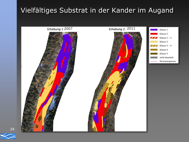 24 Vielfältiges Substrat in der Kander im Augand 2007 2011