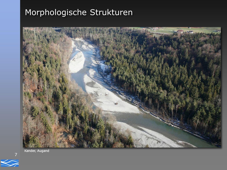 8 Morphologische Strukturen Rinne Flachwasser Furt Schnelle