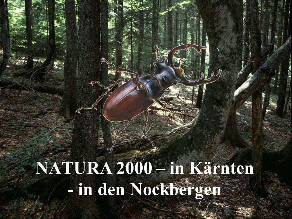 NATURA 2000 – in Kärnten - in den Nockbergen