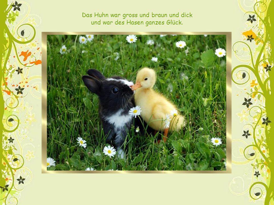 Das legte er ins Gras sodann, damit das Huhn es finden kann.