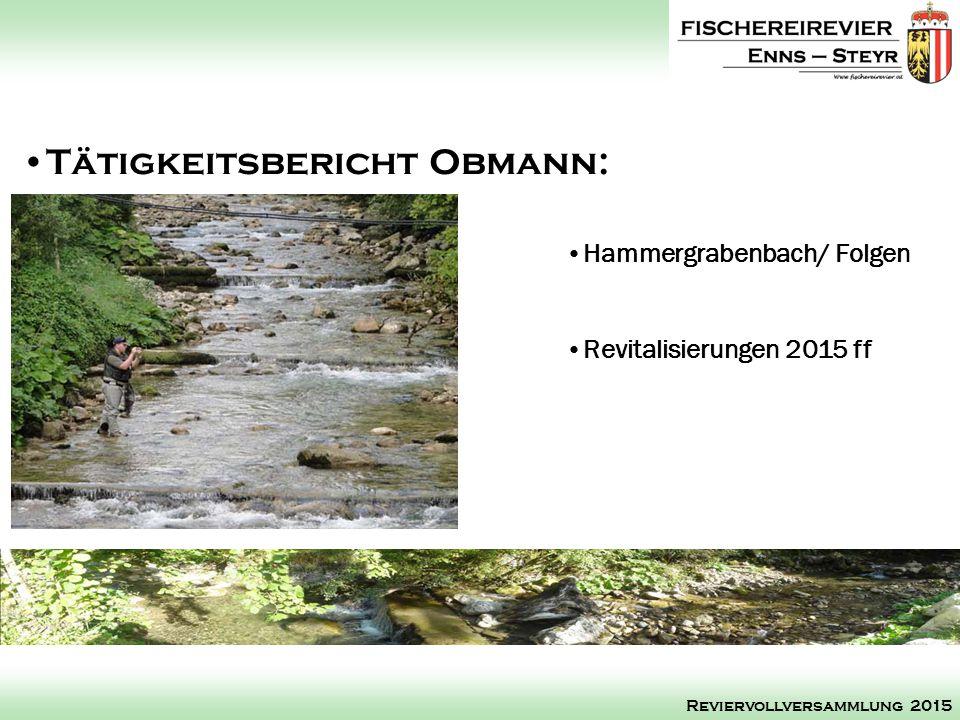 Hammergrabenbach/ Folgen Revitalisierungen 2015 ff Tätigkeitsbericht Obmann: Reviervollversammlung 2015
