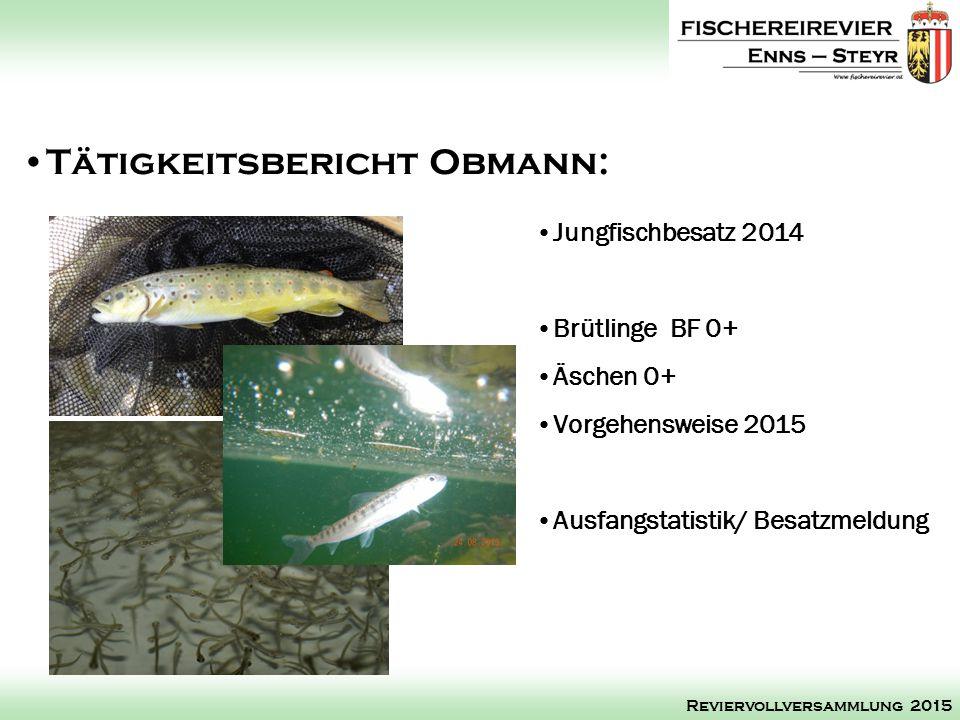 Jungfischbesatz 2014 Brütlinge BF 0+ Äschen 0+ Vorgehensweise 2015 Ausfangstatistik/ Besatzmeldung Tätigkeitsbericht Obmann: Reviervollversammlung 2015