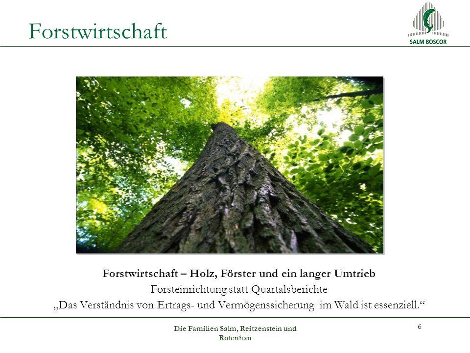 """Forstwirtschaft 6 Forstwirtschaft – Holz, Förster und ein langer Umtrieb Forsteinrichtung statt Quartalsberichte """"Das Verständnis von Ertrags- und Vermögenssicherung im Wald ist essenziell. Die Familien Salm, Reitzenstein und Rotenhan"""