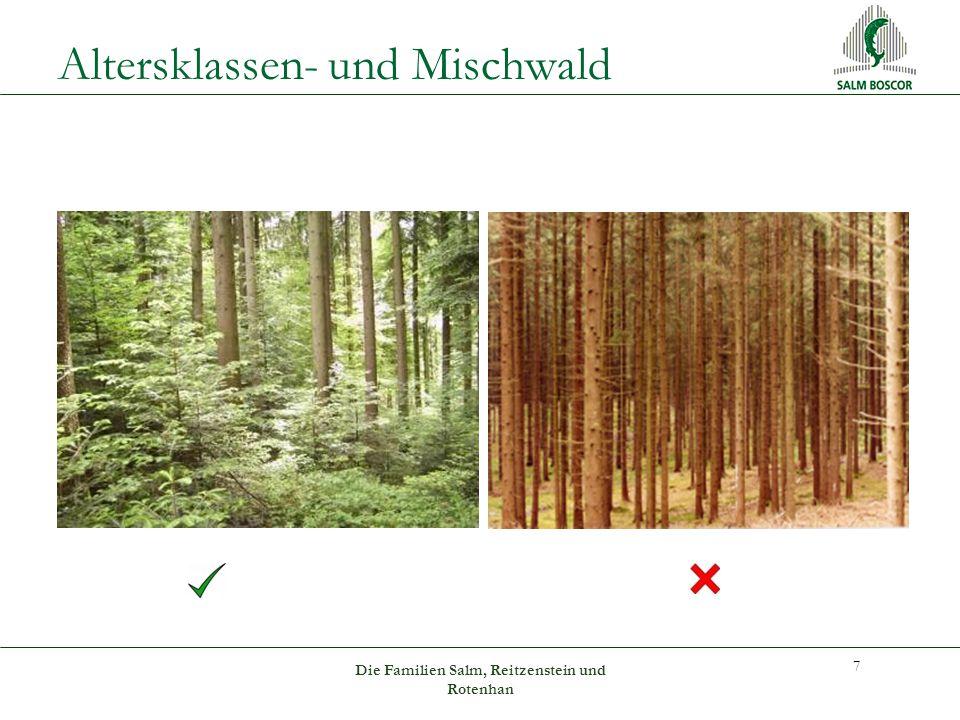 Altersklassen- und Mischwald 7 Die Familien Salm, Reitzenstein und Rotenhan