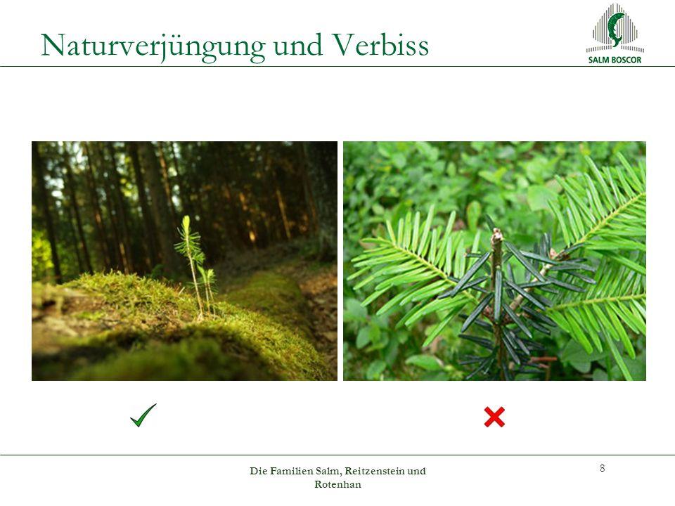 Naturverjüngung und Verbiss 8 Die Familien Salm, Reitzenstein und Rotenhan