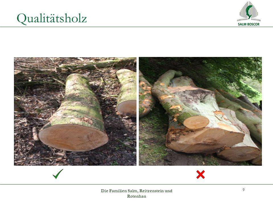 Qualitätsholz 9 Die Familien Salm, Reitzenstein und Rotenhan