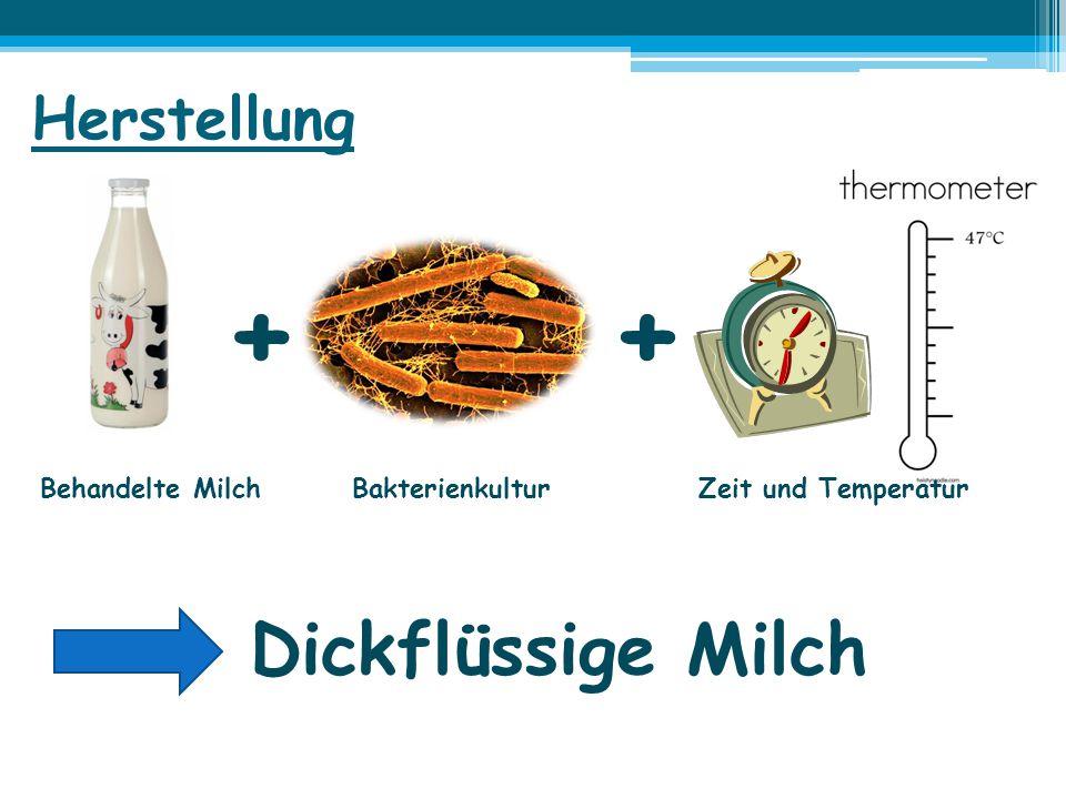 Herstellung ++ Behandelte Milch Bakterienkultur Zeit und Temperatur Dickflüssige Milch