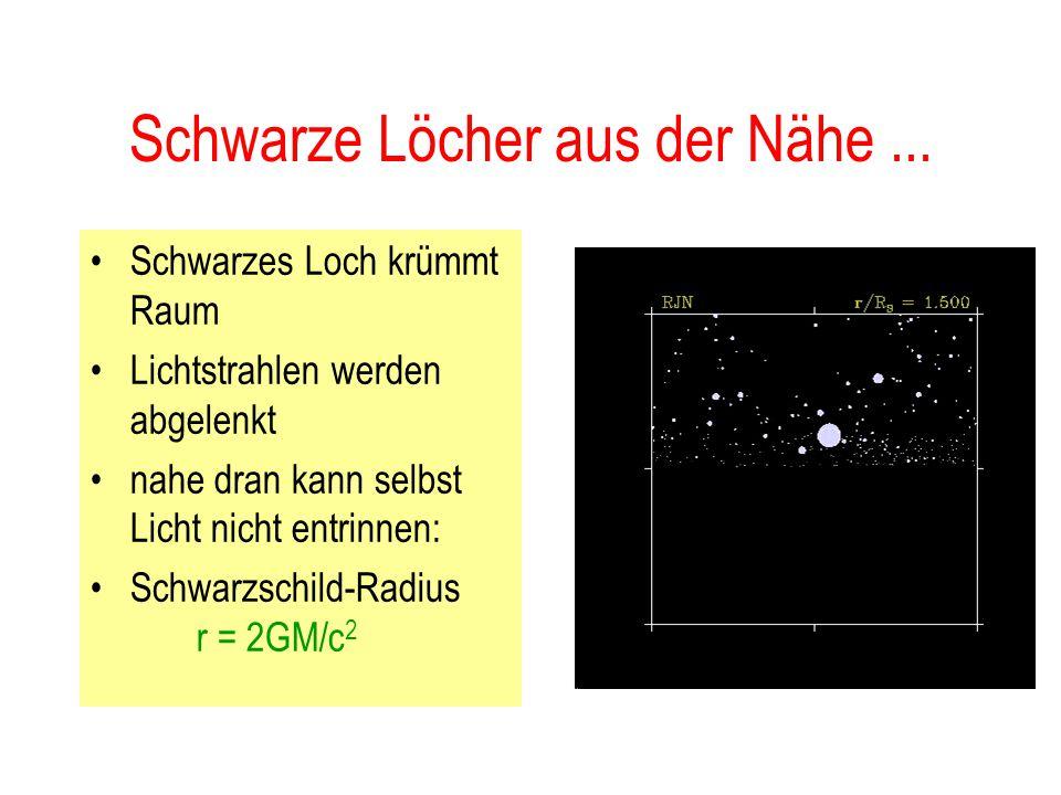 Unvorstellbare Dichten.. Neutronenstern mit Sonnenmasse hätte: –13 km Durchmesser – Dichte: 10 14 g/cm 3 –Ameise aus Neutronenstern-Material wäre so s