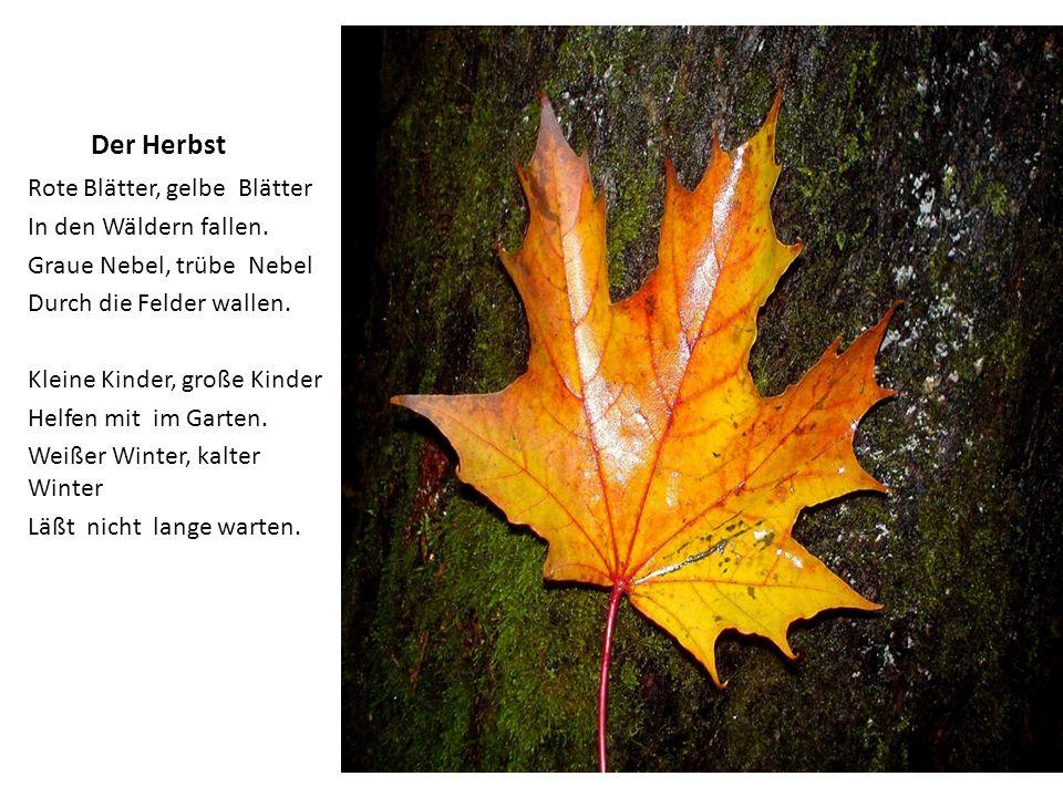 Der Herbst Rote Blätter, gelbe Blätter In den Wäldern fallen. Graue Nebel, trübe Nebel Durch die Felder wallen. Kleine Kinder, große Kinder Helfen mit