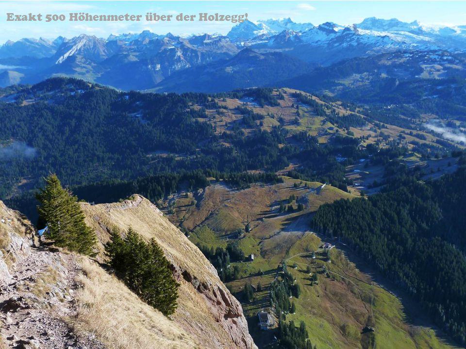 Exakt 500 Höhenmeter über der Holzegg!