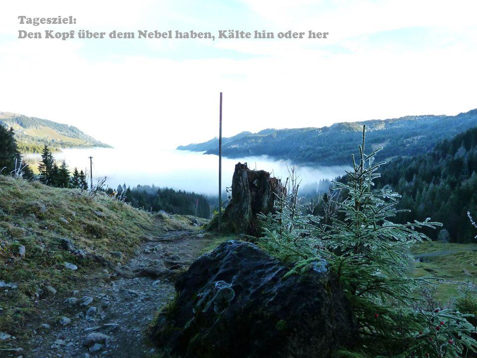Tagesziel: Den Kopf über dem Nebel haben, Kälte hin oder her