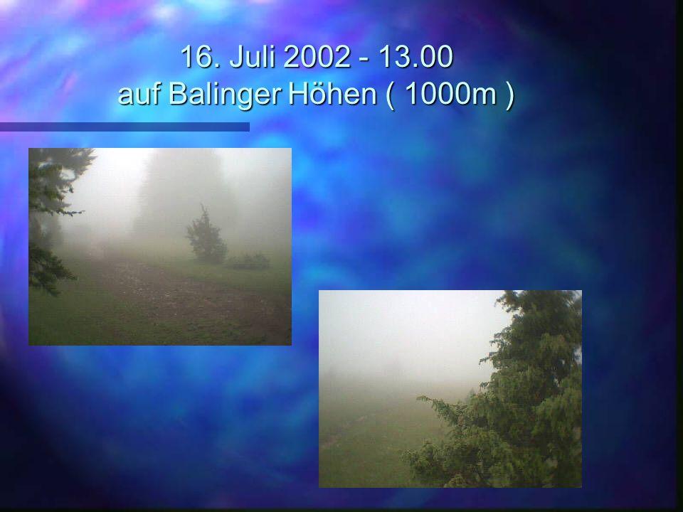 16. Juli 2002 - 13.00 auf Balinger Höhen ( 1000m )