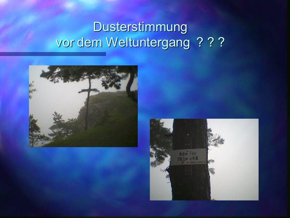 Unterwegs im Nebelwald - Ausserirdischen auf der Spur ?
