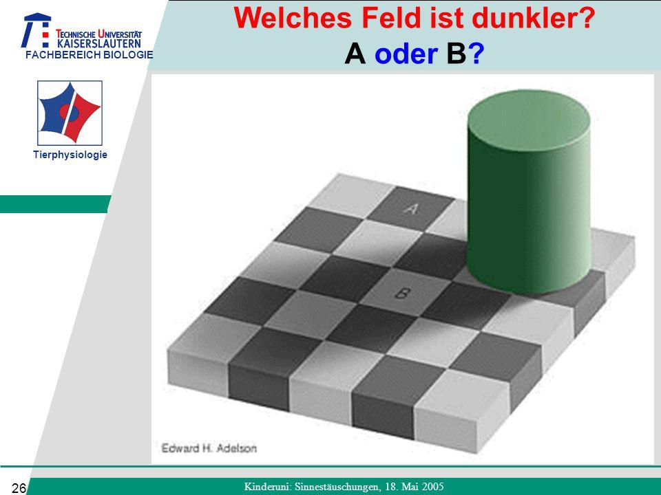 FACHBEREICH BIOLOGIE Tierphysiologie Kinderuni: Sinnestäuschungen, 18. Mai 2005 26 Welches Feld ist dunkler? A oder B?