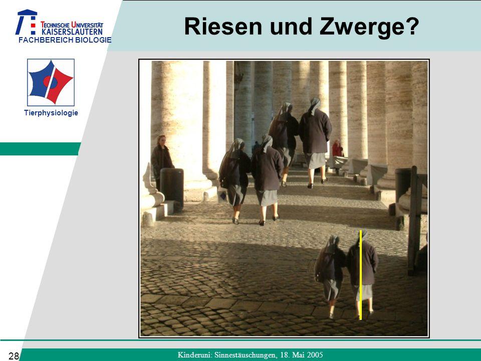 FACHBEREICH BIOLOGIE Tierphysiologie Kinderuni: Sinnestäuschungen, 18. Mai 2005 28 Riesen und Zwerge?