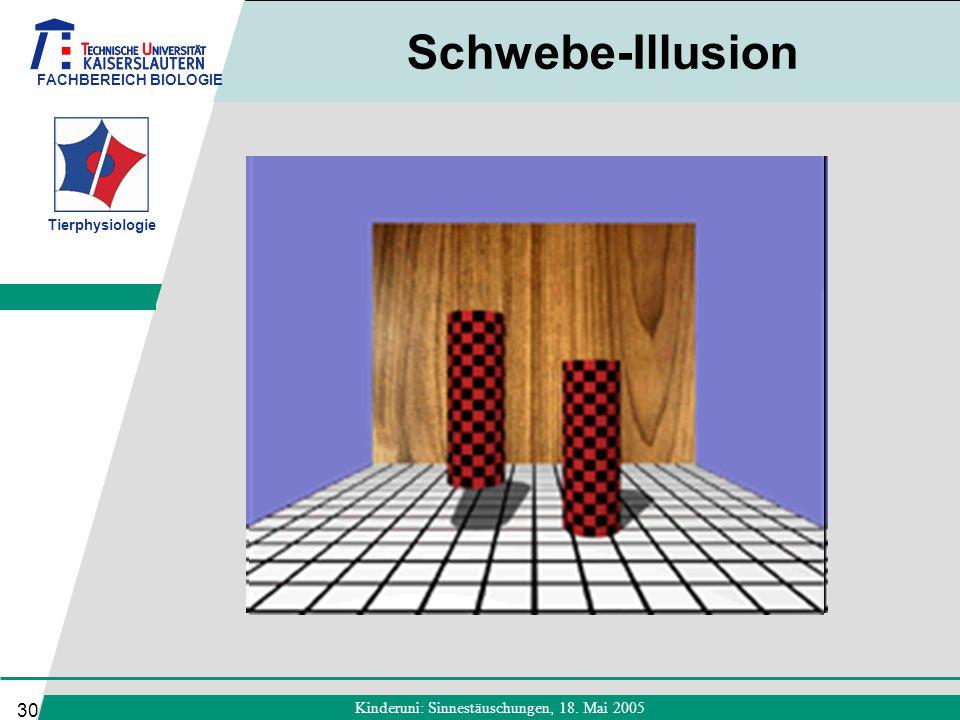 FACHBEREICH BIOLOGIE Tierphysiologie Kinderuni: Sinnestäuschungen, 18. Mai 2005 30 Schwebe-Illusion
