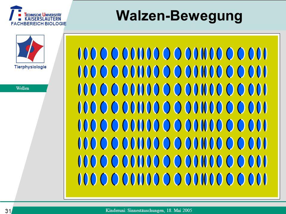 FACHBEREICH BIOLOGIE Tierphysiologie Kinderuni: Sinnestäuschungen, 18. Mai 2005 31 Walzen-Bewegung Wellen