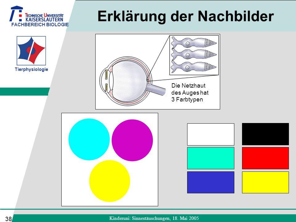 FACHBEREICH BIOLOGIE Tierphysiologie Kinderuni: Sinnestäuschungen, 18. Mai 2005 38 Erklärung der Nachbilder Die Netzhaut des Auges hat 3 Farbtypen