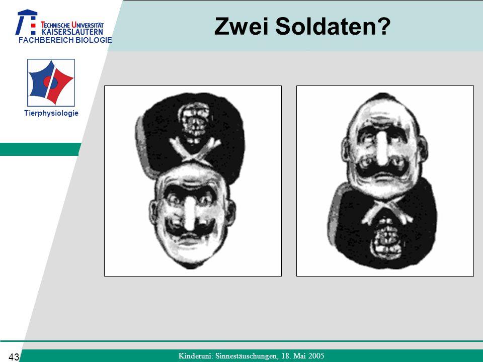 FACHBEREICH BIOLOGIE Tierphysiologie Kinderuni: Sinnestäuschungen, 18. Mai 2005 43 Zwei Soldaten?