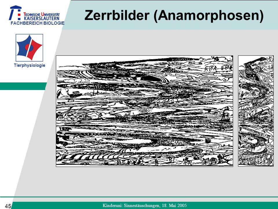 FACHBEREICH BIOLOGIE Tierphysiologie Kinderuni: Sinnestäuschungen, 18. Mai 2005 45 Zerrbilder (Anamorphosen)
