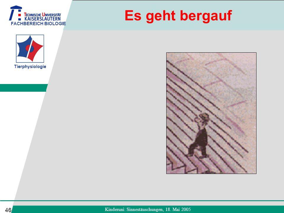 FACHBEREICH BIOLOGIE Tierphysiologie Kinderuni: Sinnestäuschungen, 18. Mai 2005 46 Es geht bergauf