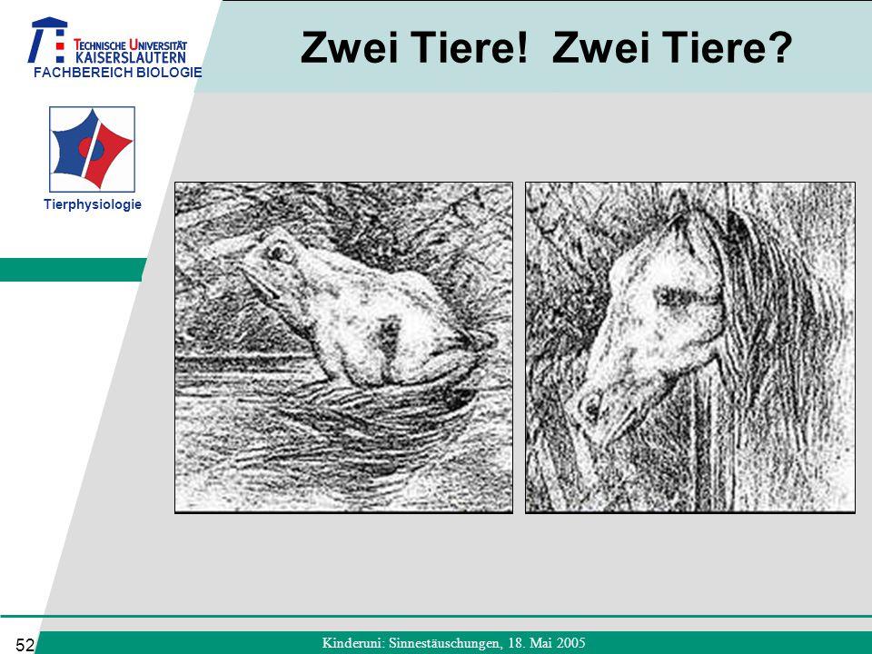 FACHBEREICH BIOLOGIE Tierphysiologie Kinderuni: Sinnestäuschungen, 18. Mai 2005 52 Zwei Tiere! Zwei Tiere?