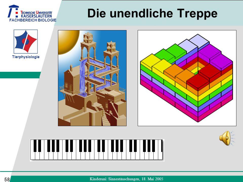 FACHBEREICH BIOLOGIE Tierphysiologie Kinderuni: Sinnestäuschungen, 18. Mai 2005 58 Die unendliche Treppe