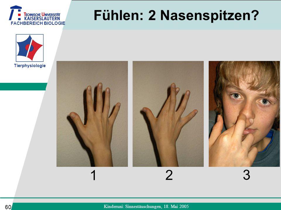 FACHBEREICH BIOLOGIE Tierphysiologie Kinderuni: Sinnestäuschungen, 18. Mai 2005 60 Fühlen: 2 Nasenspitzen? 1 2 3