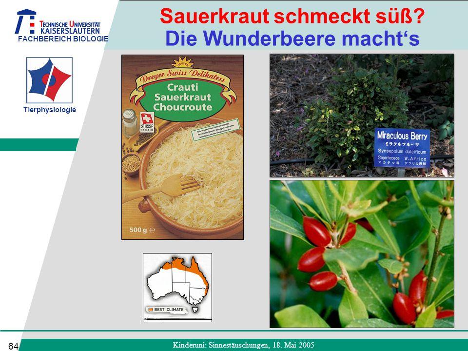 FACHBEREICH BIOLOGIE Tierphysiologie Kinderuni: Sinnestäuschungen, 18. Mai 2005 64 Sauerkraut schmeckt süß? Die Wunderbeere macht's