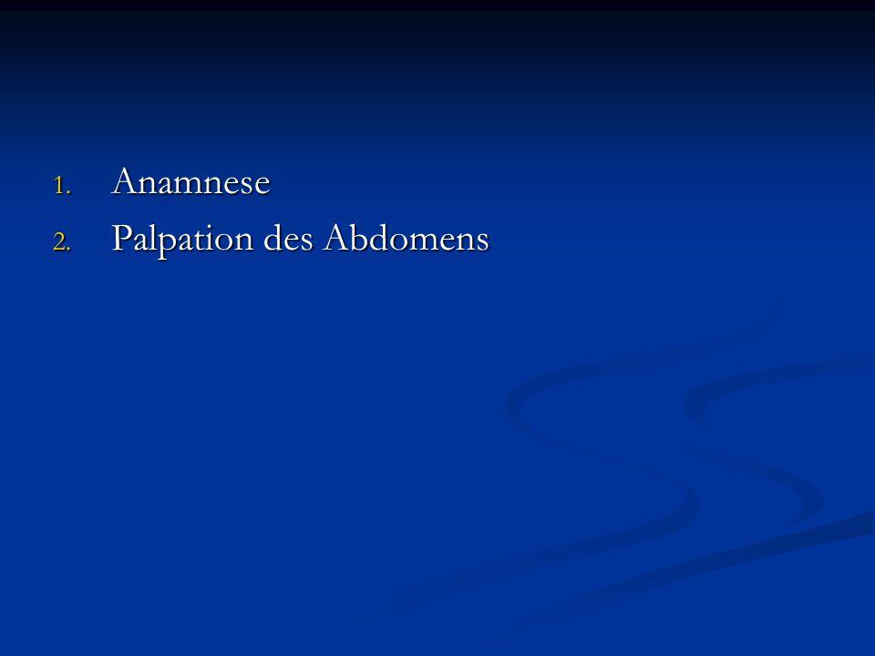 1. Anamnese 2. Palpation des Abdomens