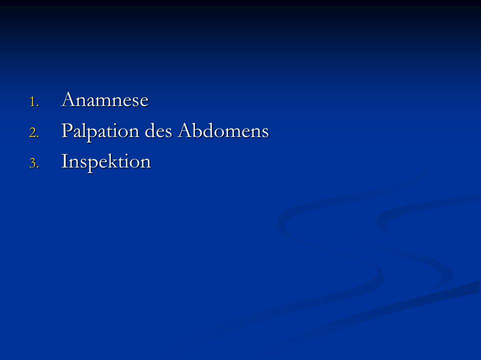 1. Anamnese 2. Palpation des Abdomens 3. Inspektion