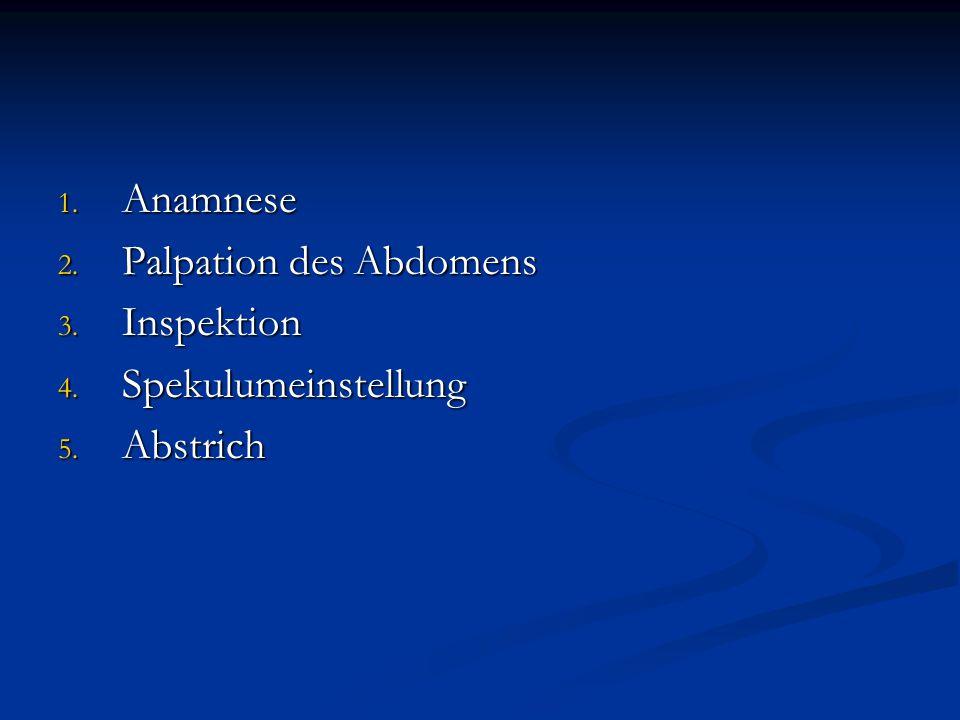 1. Anamnese 2. Palpation des Abdomens 3. Inspektion 4. Spekulumeinstellung 5. Abstrich