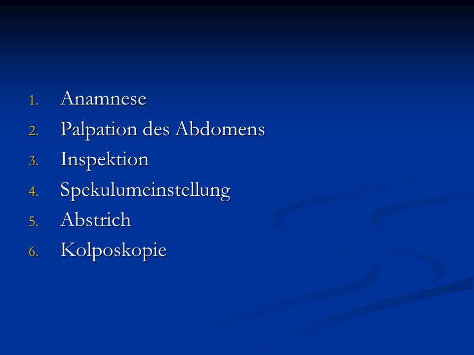 1. Anamnese 2. Palpation des Abdomens 3. Inspektion 4. Spekulumeinstellung 5. Abstrich 6. Kolposkopie