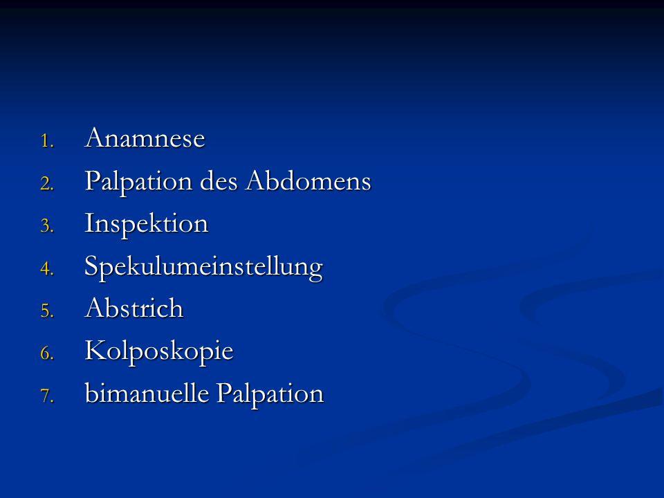 1. Anamnese 2. Palpation des Abdomens 3. Inspektion 4. Spekulumeinstellung 5. Abstrich 6. Kolposkopie 7. bimanuelle Palpation