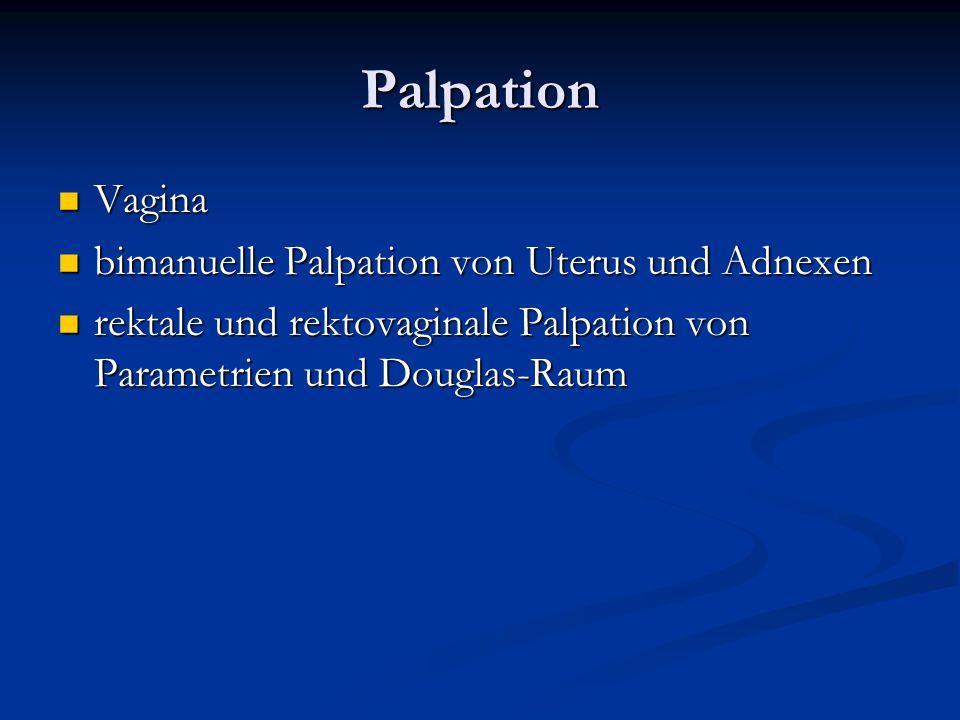 Palpation Vagina Vagina bimanuelle Palpation von Uterus und Adnexen bimanuelle Palpation von Uterus und Adnexen rektale und rektovaginale Palpation vo