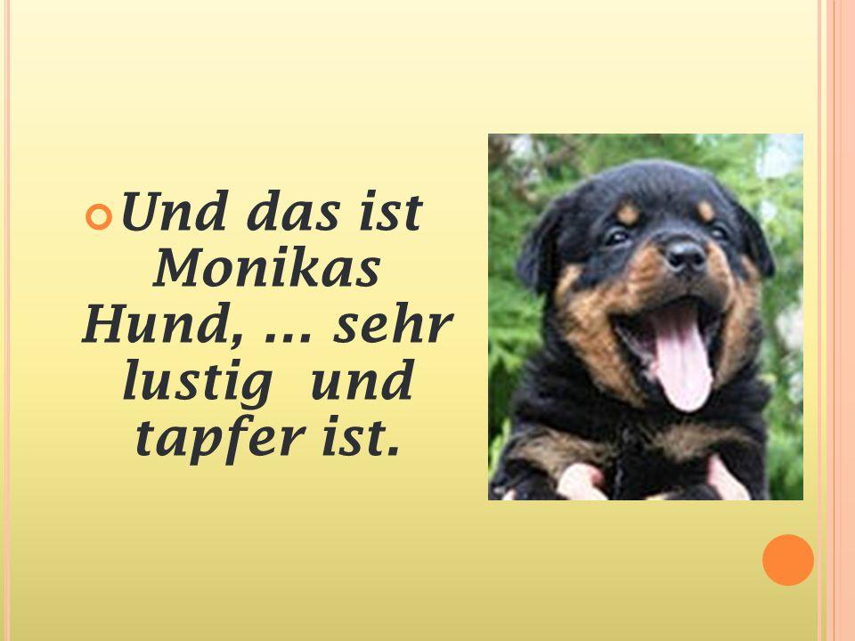 Und das ist Monikas Hund, … sehr lustig und tapfer ist.