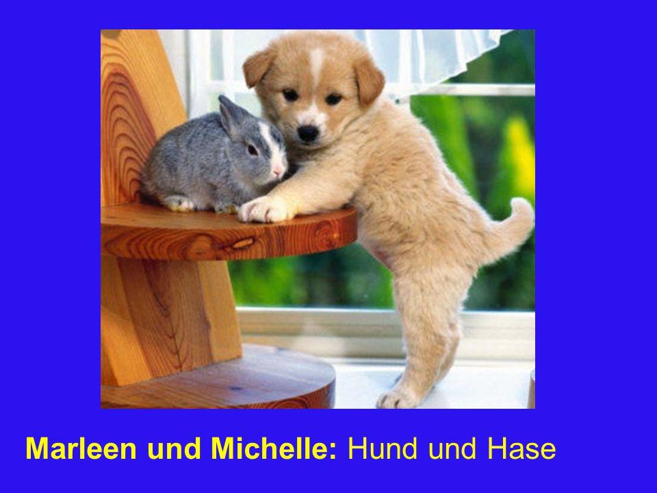 Marleen und Michelle: Hund und Hase