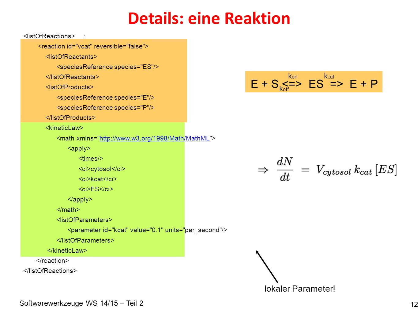 Softwarewerkzeuge WS 14/15 – Teil 2 Details: eine Reaktion 12 : http://www.w3.org/1998/Math/MathML cytosol kcat ES E + S ES => E + P k on k off k cat lokaler Parameter!