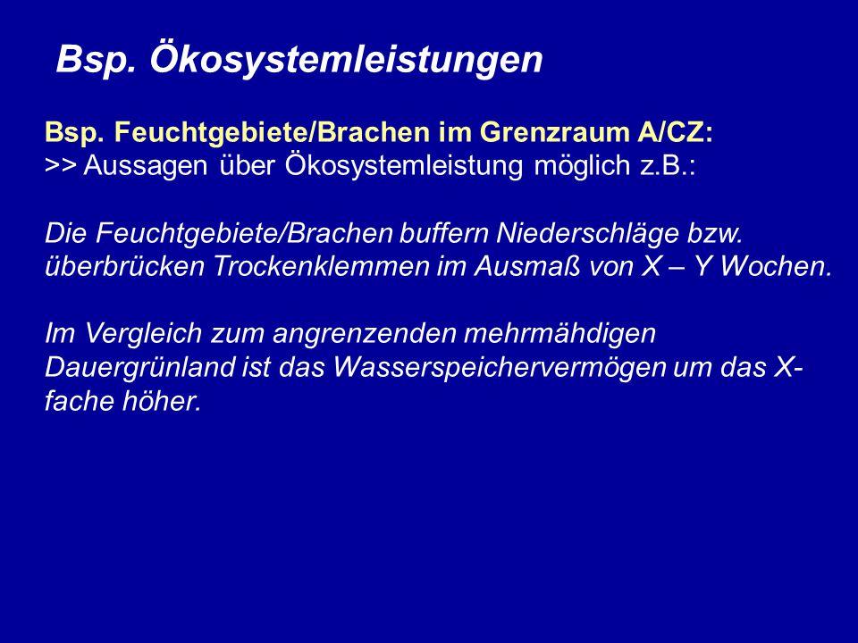 Bsp. Ökosystemleistungen Bsp. Feuchtgebiete/Brachen im Grenzraum A/CZ: >> Aussagen über Ökosystemleistung möglich z.B.: Die Feuchtgebiete/Brachen buff