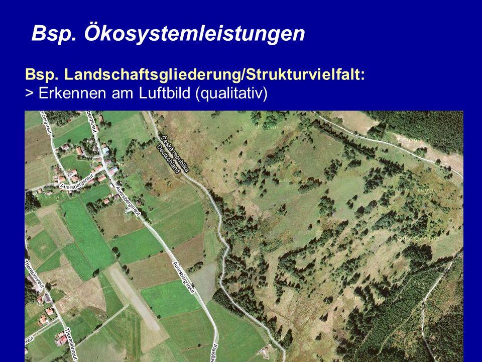Bsp. Ökosystemleistungen Bsp. Landschaftsgliederung/Strukturvielfalt: > Erkennen am Luftbild (qualitativ)
