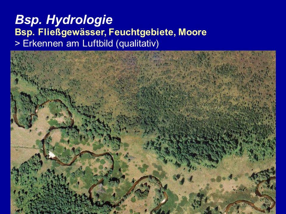 Bsp. Hydrologie Bsp. Fließgewässer, Feuchtgebiete, Moore > Erkennen am Luftbild (qualitativ)